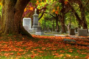 See? Pretty. Image of the Ross Bay Cemetery, photo by Brandon Godfrey.
