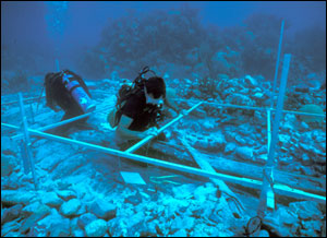 Laying a grid underwater; image from sanctuaries.noaa.gov