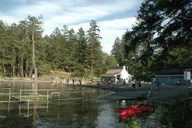 The very picturesque Thetis Lake