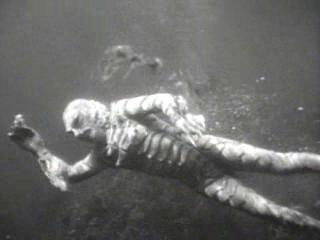 A still of Gill-man from the Creature from the Black Lagoon VHS