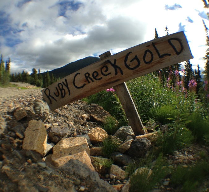 Looking for gold? As of today, total gold found in the area amounts to approximately  $23,000,000. Photo from  www-therooster-ca.jpg